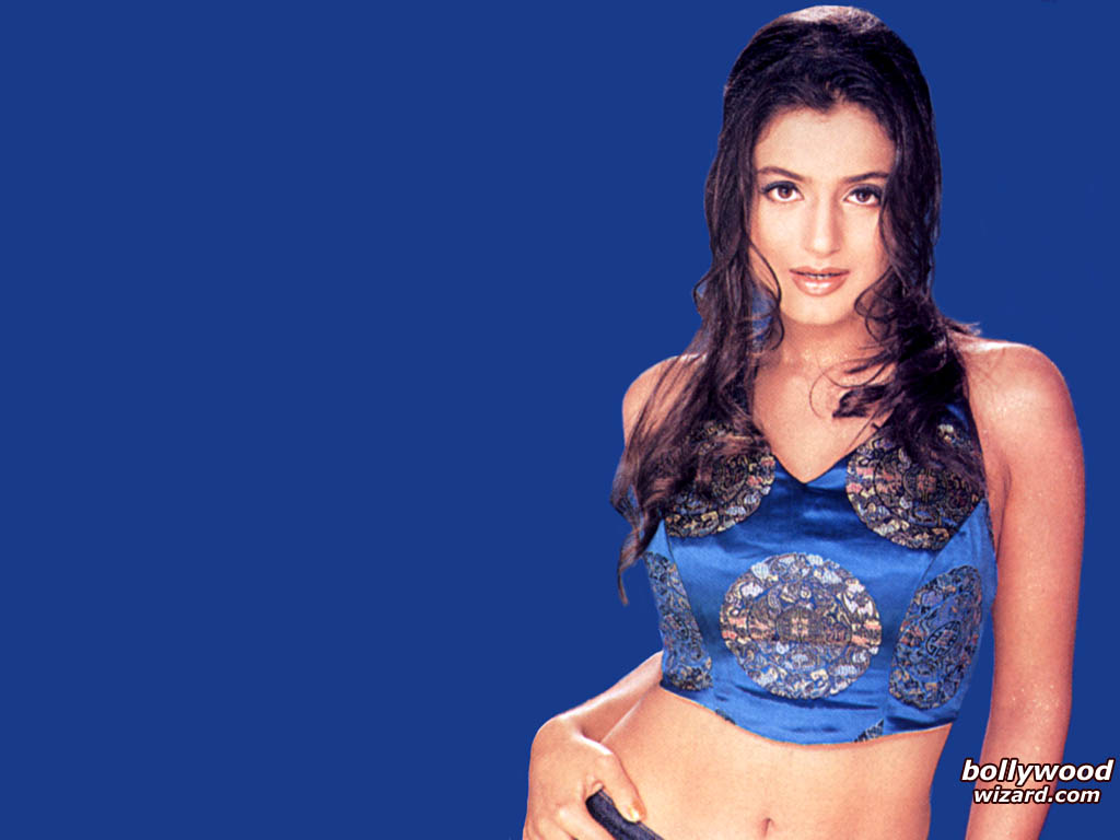 bollywoodwizard : wallpaper / picture of amisha patel